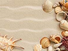Sea Shells Background Seashell Wallpapers Wallpaper Cave