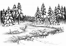 Malvorlagen Frozen Lake Winter River And Conifer Forest Vector Drawing