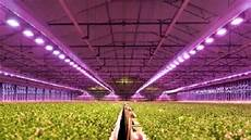 Led Lights Greenhouse Is It Beneficial To Use Led Grow Lights In Greenhouse