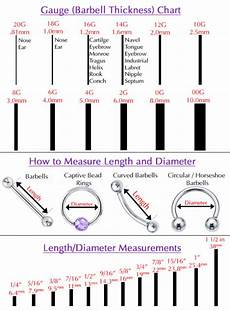 Belly Piercing Chart Guide To Buying Amp Care Of Body Piercings Ebay