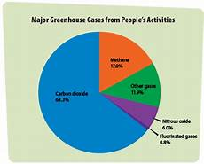 What Effect Does Human Activity Have On Many Ecosystems What Are Greenhouse Gases Main Sources And Climate Impact