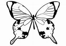 Malvorlagen Zum Ausdrucken Schmetterling Ausmalbilder Schmetterling 10 Ausmalbilder Malvorlagen