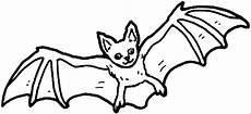 Fledermaus Malvorlagen Bat Coloring Book