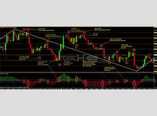 Trade Forex Easy   Learn How to Forex Trading Success