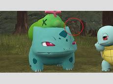 Pokemon   Starter Squad (Animated Fan Series)   Forumla.de