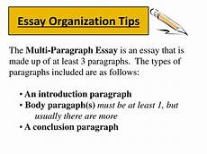 Essay Organization Types 005 Essay Types Essays Image Resume Template On Of Police