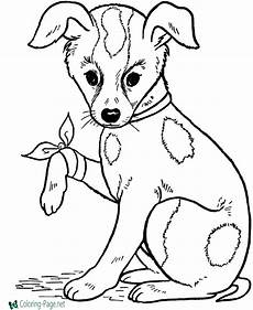 Ausmalbilder Tiere Hunde Coloring Pages