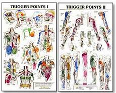 Trigger Point Charts Showing The Many Common Referral