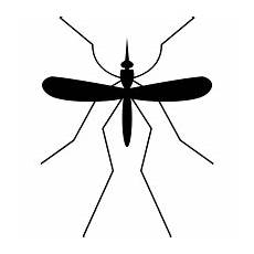 mosquito icons noun project