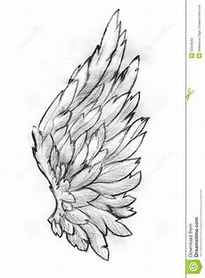 Drawing Of Angel Wings Wing Pencil Sketch Stock Illustration Image Of Artistic