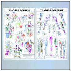 Travell Trigger Point Chart Trigger Points I And Ii Anatomical Chart