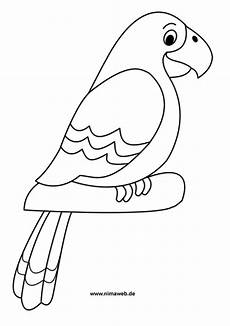 papagei malvorlagen kostenlos zum ausdrucken
