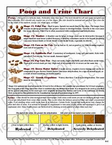 Stool Color Chart Human Light Brown Stool In Dogs Decoratingspecial Com