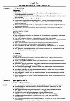 External Auditor Resume It Auditor Resume Samples Velvet Jobs