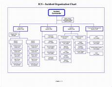 Microsoft Word Org Chart Template 8 Microsoft Excel Organizational Chart Template Excel