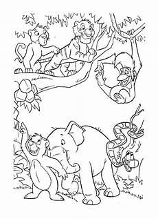 Ausmalbilder Urwald Tiere Malvorlagen Urwald F Kinder Tiffanylovesbooks