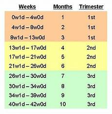 23 Weeks Is How Many Months Chart For Those Of You Who Are Confused About How Many Months