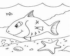 schoene unterwasserwelt ausmalbilder dekoking 6