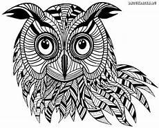 eulen ausmalbilder owl wings owl bird owl