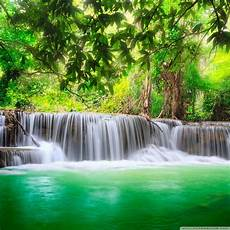 Nature 4k Wallpaper For Tablet by Green Nature Wallpapers Wallpaper Cave