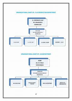 Day Spa Organizational Chart Identifying The Roles And Responsibilities Of Hr In