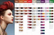 Pravana Chromasilk Color Chart Pin By Casutt On Cosmo In 2019 Pravana Hair Color