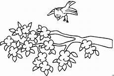 Malvorlage Vogel Auf Ast Vogel Mit Ast Ausmalbild Malvorlage Comics