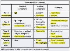 Hypersensitivity Reaction Immunology Hypersensitivity Reactions Dropped Image Link