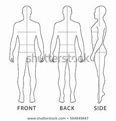 Outline Of Human Body Front And Back Fashion Bald Man Full Length Outlined Stock Vector