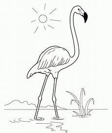 malvorlage flamingo basteln basteln flamingo
