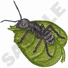 Ant Embroidery Design Carpenter Ant Embroidery Designs Machine Embroidery