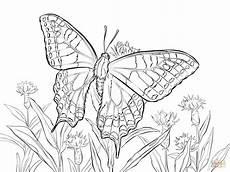 Ausmalbilder Schmetterling Drucken Ausmalbild Schwalbenschwanz Ausmalbilder Kostenlos Zum