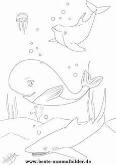 Ausmalbilder Zum Ausdrucken Unterwasserwelt Ausmalbilder Fische Hai Delfin Wal Ausmalbilder Fische