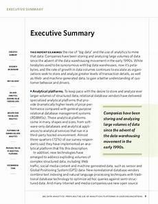 executive summary of books executive summary example alisen berde