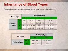 Blood Type Heredity Chart Can A Child Have A Different Blood Type Than Both Parents