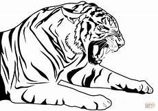 Malvorlagen Kostenlos Tiger Tiger Coloring Page Free Printable Coloring Pages