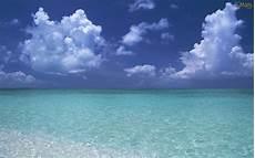 mar azul osmais papel de parede mar azul papel de parede