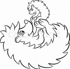 hedgehog coloring pages at getcolorings free