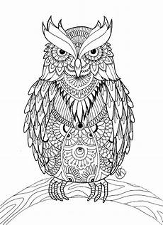 Owl Sheets Owl Coloring Pages For Adults Free Detailed Owl Coloring