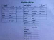 Iguana Food Chart Iguana Diet Chart Iguanas Pinterest Iguana Diet