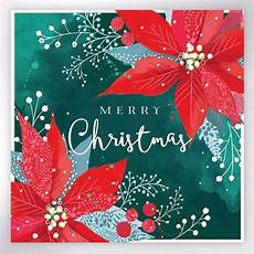 Christmas Greeting Cards Images Poinsettia Flower Christmas Cards Woodland Trust Shop