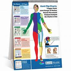 Flip Chart Trigger Point Kent Health Systems