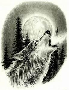 desenho de lobos desenhos fotos e de