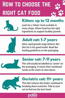 How Much To Feed A Cat Chart When To Start Feeding Cat Food To Kittens Catwalls