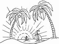 ausmalbilder malvorlagen palmen kostenlos zum