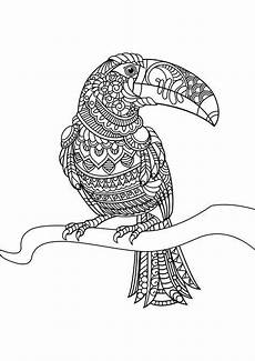 animal coloring pages pdf mandala vogel malvorlagen