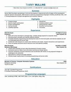 web developer resume examples created by pros