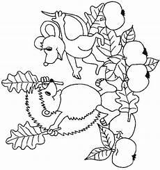 Malvorlagen Herbst Igel N 32 Coloring Pages Of Hedgehogs