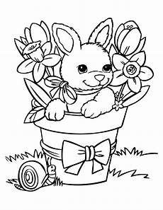 cute baby rabbit coloring page h m coloring pages