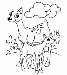 Malvorlagen Tieren Top 25 Free Printable Coloring Pages Of Animals